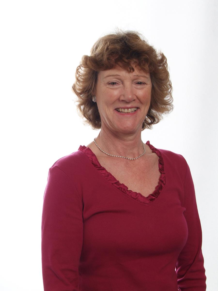 Cllr Ann Grinbergs